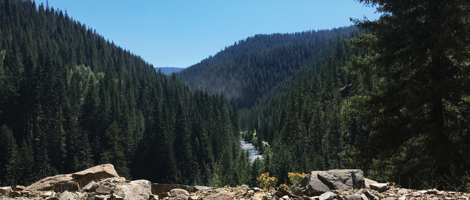 The North Fork of the St. Joe River is visible from the trailhead and along opening portions of trail 189.