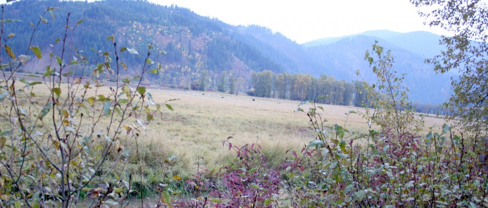 St. Maries Valley