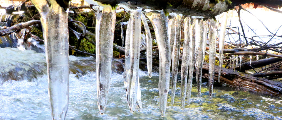 Ice hangs on a branch over a creek near Santa. The spring thaw is still underway. There has been more rain and cooler temperatures, which will produce a better snowpack going into summer this year.